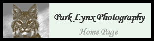 Park Lynx Prints and AAALynx's COOL 101