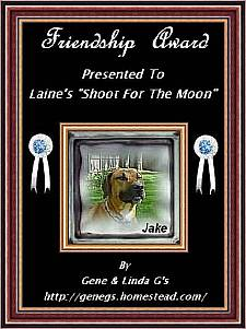 Jean and Linda's Friendship Award