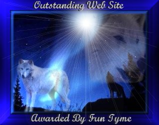 Funtyme Outstanding Web Site Award