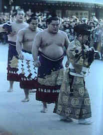 sumo3.jpg